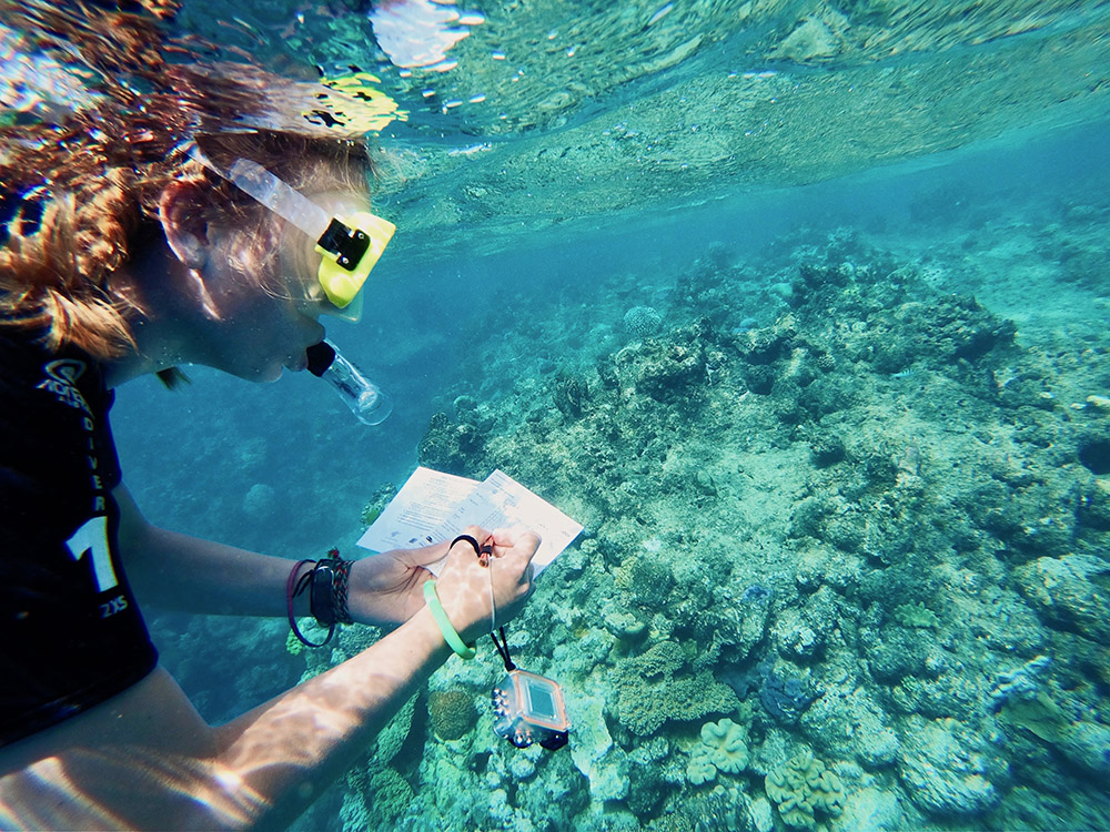 person taking notes underwater