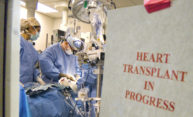 Organ transplant programs continue despite pandemic