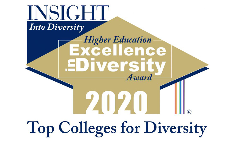 logo for insight into diversity higher education excellence in diversity award