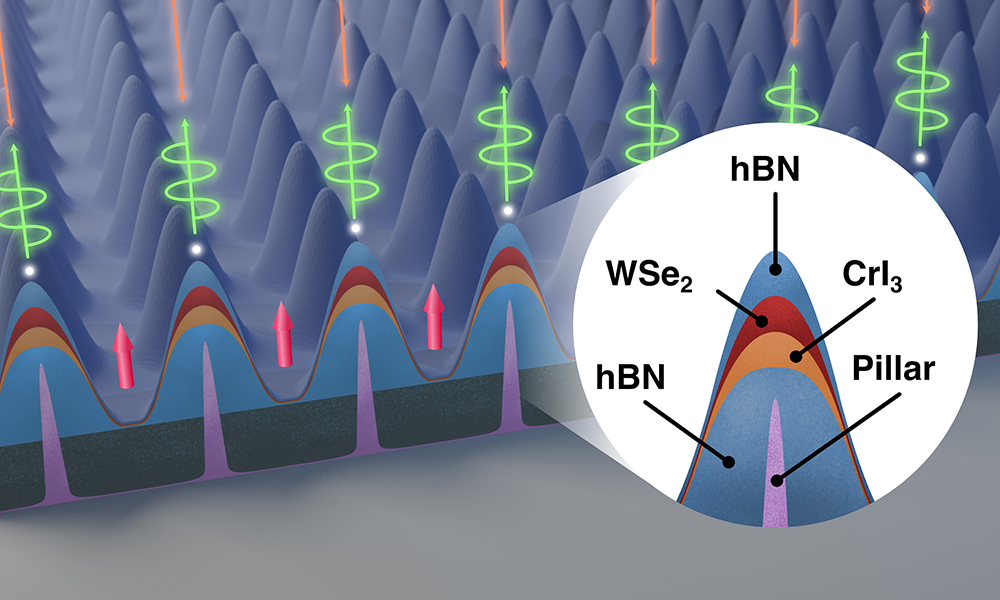 illustration of a nanoscale node with close-up of one of an array of pillars.
