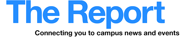 The Report newsletter logo