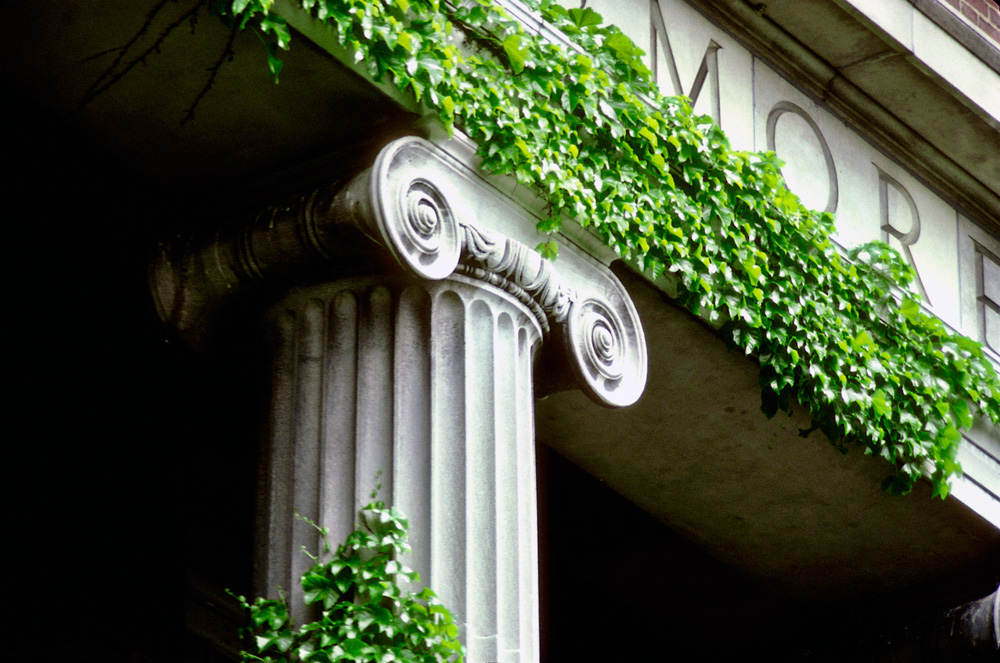 stone column of building covered in ivy